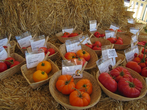 Locals grew vegetables and entered them into the OC Fair's competition.
