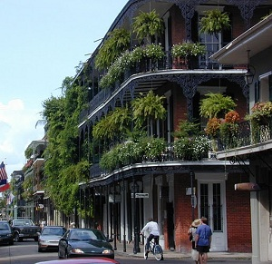 New Orleans balcony gardens