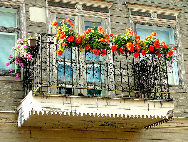Balcony Garden Flowers