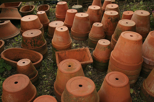 Terra cotta plant containers drainage holes