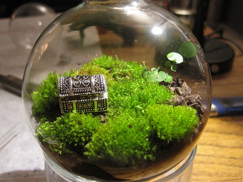 Globe terrarium with treasure chest