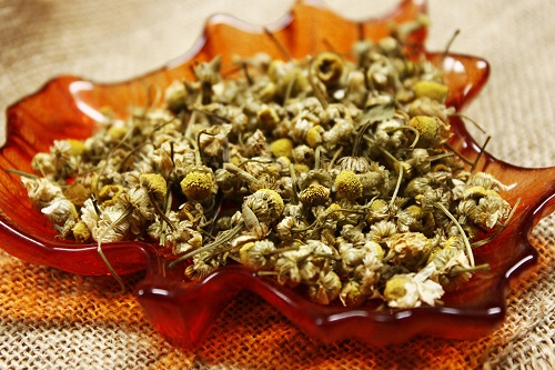 Dried chamomile flowers for tea