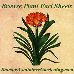 Plant fact sheets
