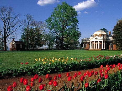 Thomas Jefferson's Monticello Westlawn Tuliips