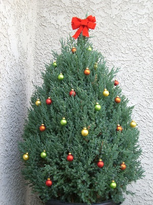 Christmas decorations pine tree